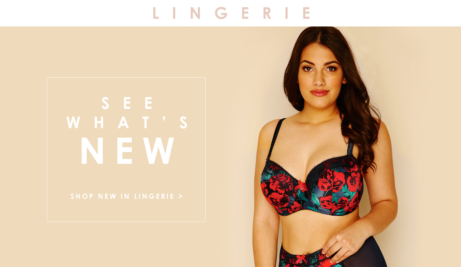 Plus Size Lingerie New in