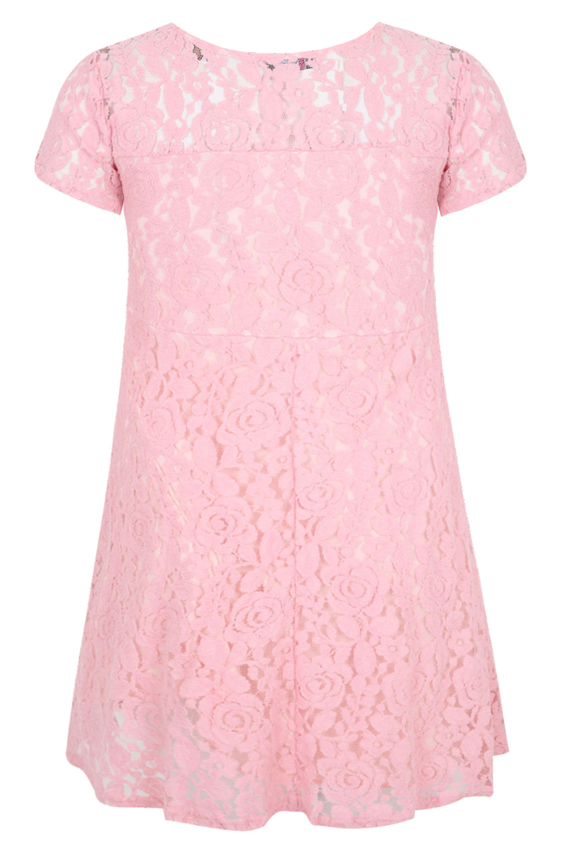 Pastel Pink Lace Skater Dress With Short Sleeves Plus Size