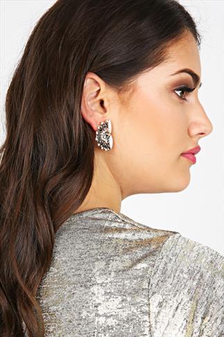 Silver Crystal Stone Fan Earrings