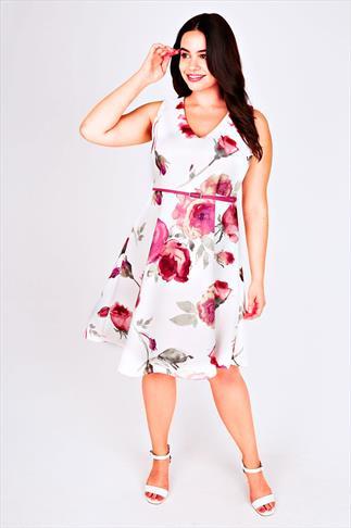 Ivory & Pink Rose Print V-Neck Skater Dress