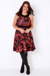 Black & Red Poppy Print Skater Dress